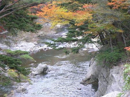 2008_11_14_iwaki_007