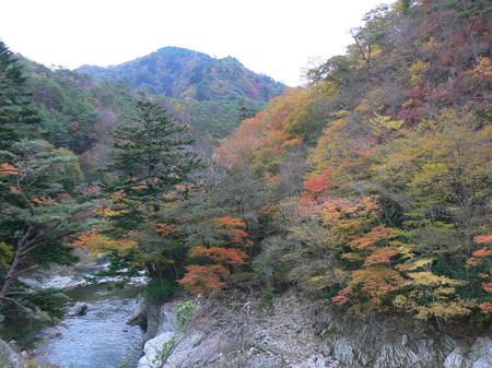 2008_11_14_iwaki_009